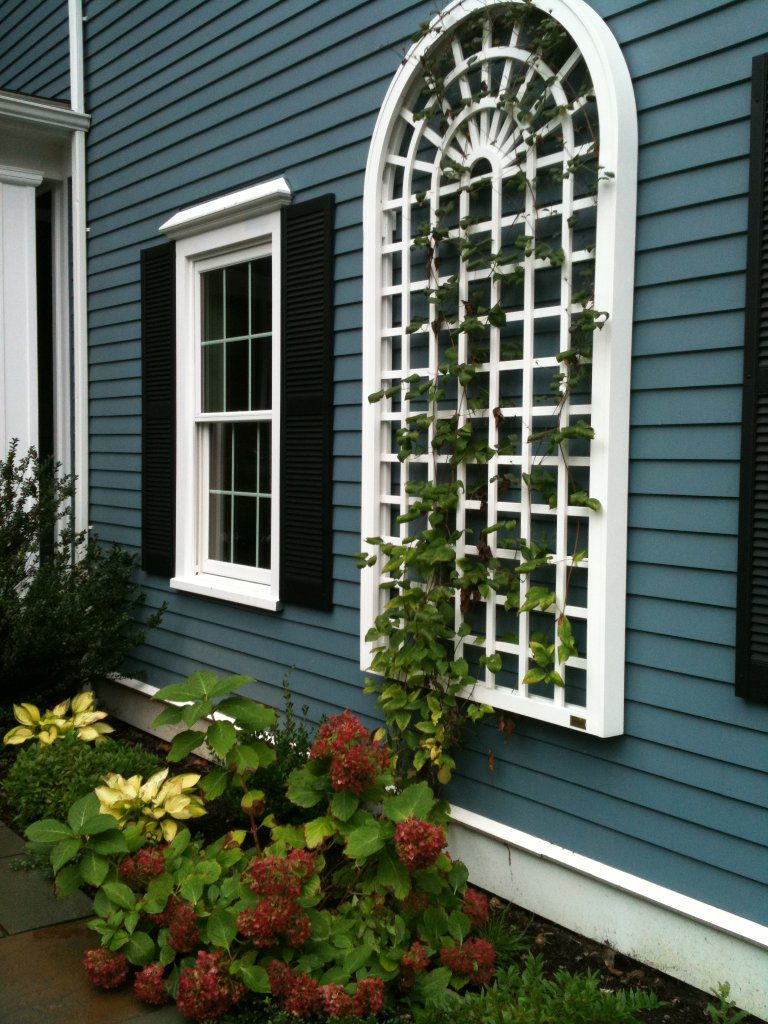 Arched Wall Trellis