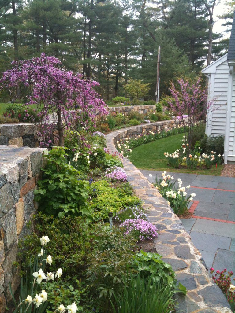 Terrace Retaining Walls Early Spring
