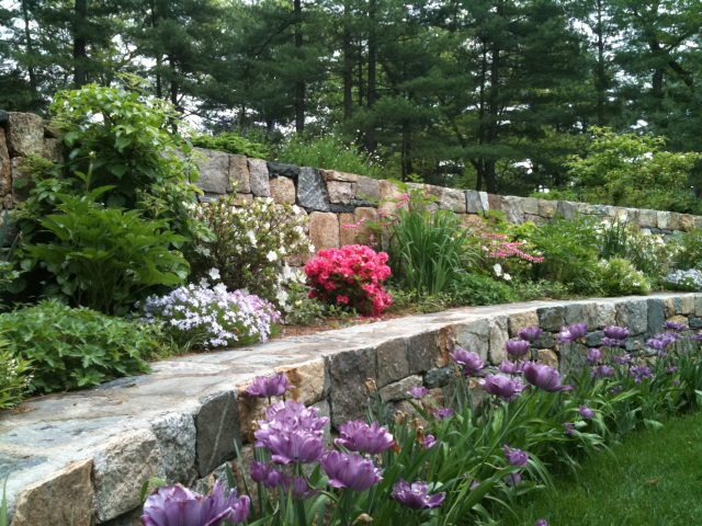 Terrace Retaining Walls Late Spring (Close-Up View)