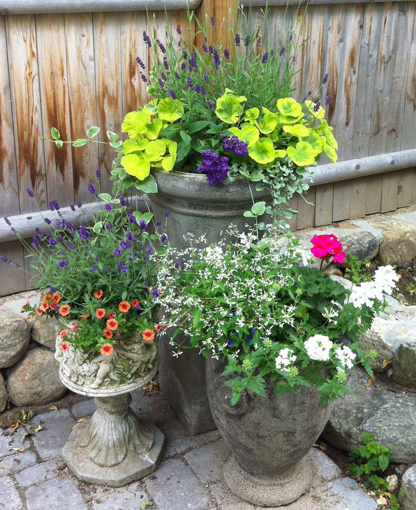 Decorative Containers as Art