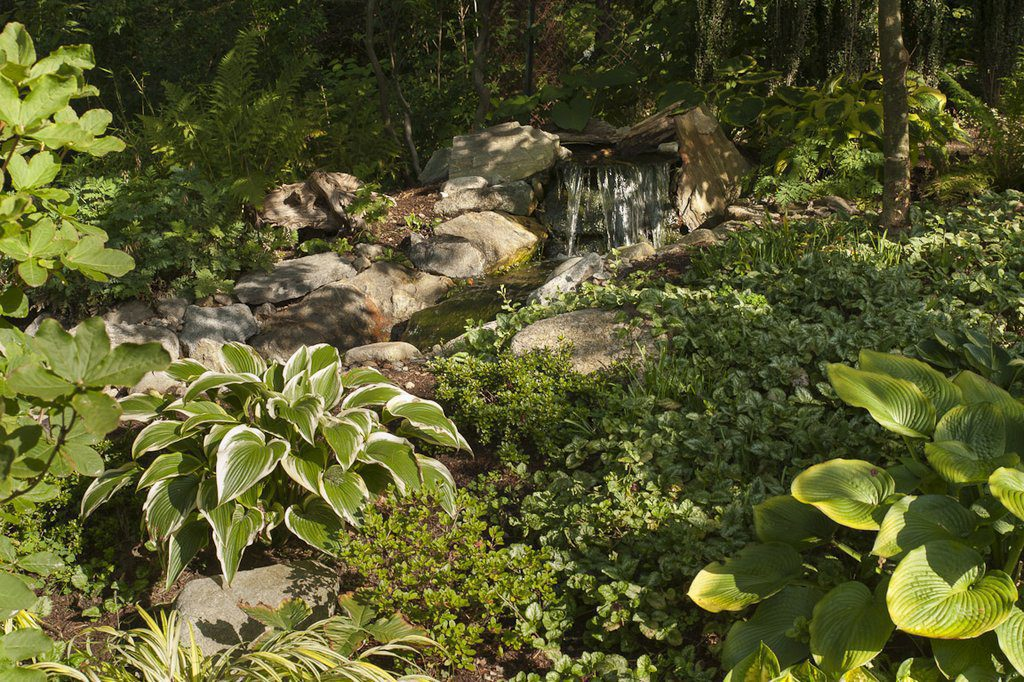 Koi Pond and Waterfall (View from the Sun Room)