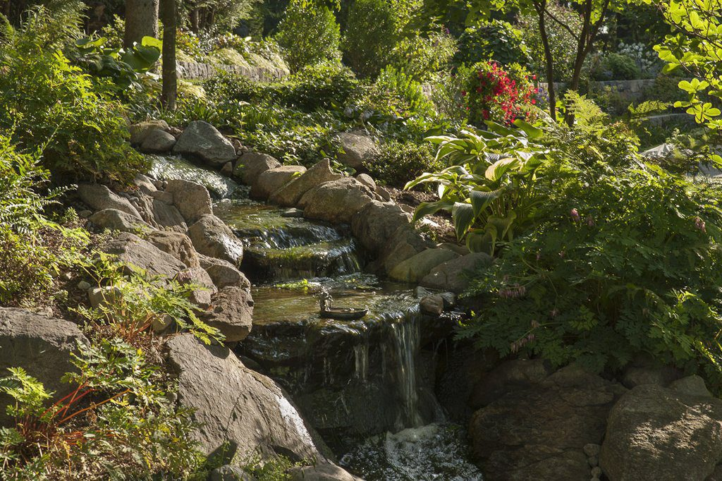 Koi Pond and Waterfall (Frog Ornament in the Waterfall)