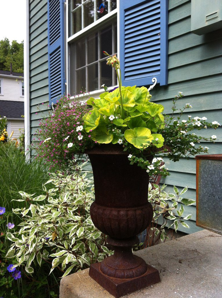 Urns on the Stoop